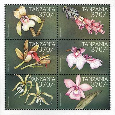 [Orchids from around the World, Typ ]
