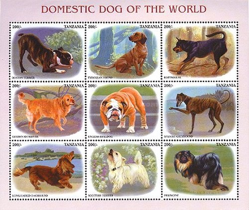 [Dogs from around the World, Typ ]