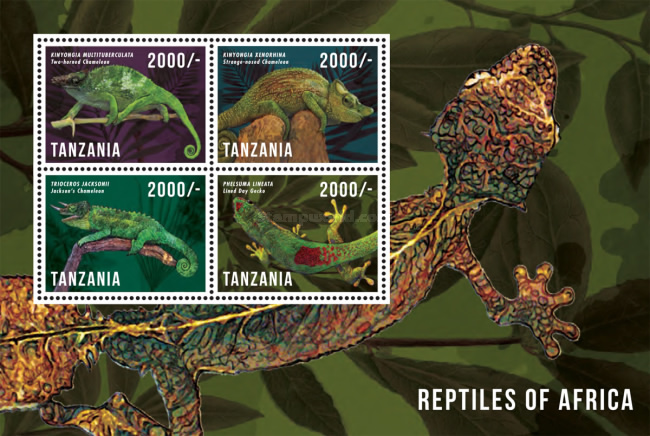 [Reptiles of Africa, Typ ]