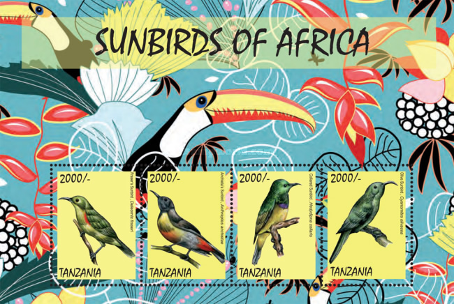[Birds - Sunbirds of Africa, Typ ]