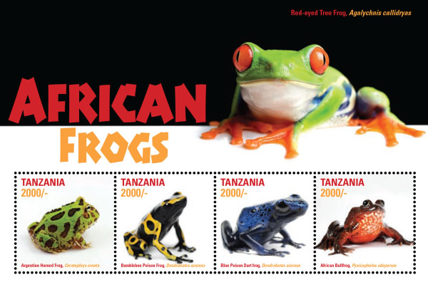 [African Frogs, Typ ]