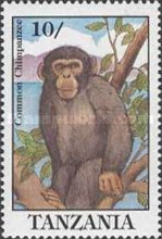 [Chimpanzee, type APD]