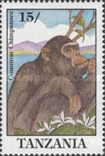 [Chimpanzee, type APE]