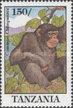 [Chimpanzee, type API]