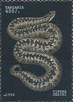 [Snakes, Typ CLO]