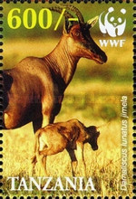 [Worldwide Nature Protection - Jimela Topi, Typ FRR]