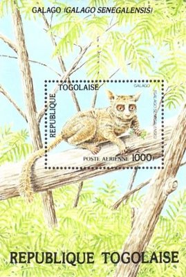 [Airmail - Worldwide Nature Protection - Wild Animals, Typ ]
