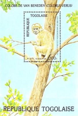 [Airmail - Worldwide Nature Protection - Wild Animals, type ]