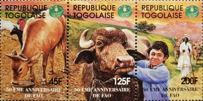 [The 50th Anniversary of FAO, type ]