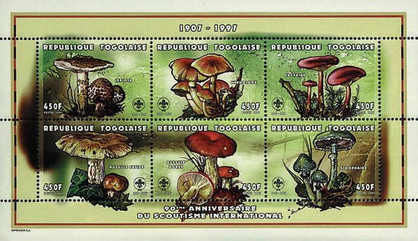[The 90th Anniversary of the International Scouting Organizations - Natural History, type ]