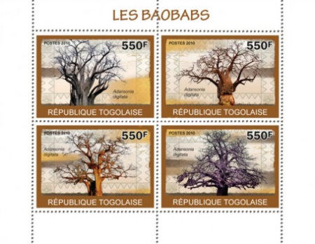 [Trees - Baobabs, type ]