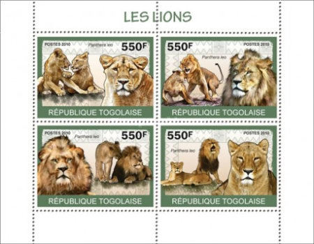 [Fauna - Lions, type ]