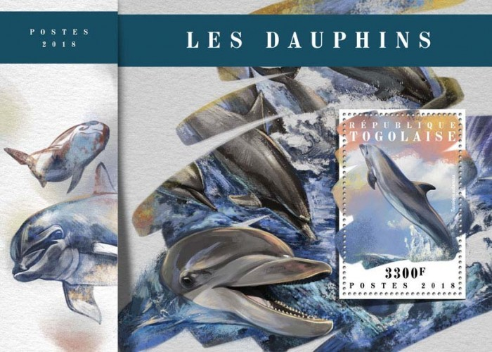 [Fauna - Dolphins, type ]