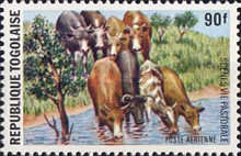 [Airmail - Scenes from the Pastoral Economy, type AAK]