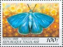 [Butterflies from around the World, Typ CQJ]