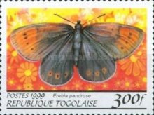 [Butterflies from around the World, Typ CQM]