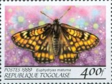 [Butterflies from around the World, Typ CQN]