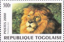 [Big Cats from around the World, type CUO]