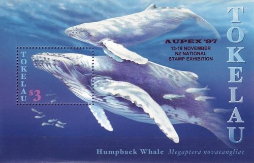 [Humpback Whales, Typ ]