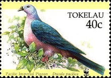 [Worldwide Nature Protection - Pacific Imperial Pigeon, Typ HD]