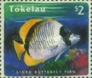 [Reef Fish, Typ HJ]