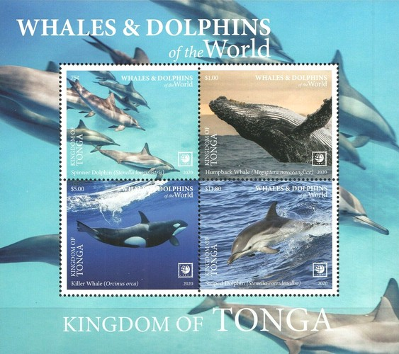 [Marine Life - Whales and Dolphins of the World - White Frame on 2 Sides, Typ ]