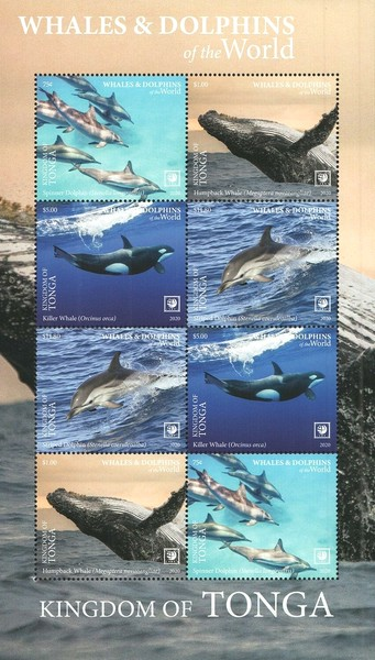 [Marine Life - Whales and Dolphins of the World - Without Frame, type ]