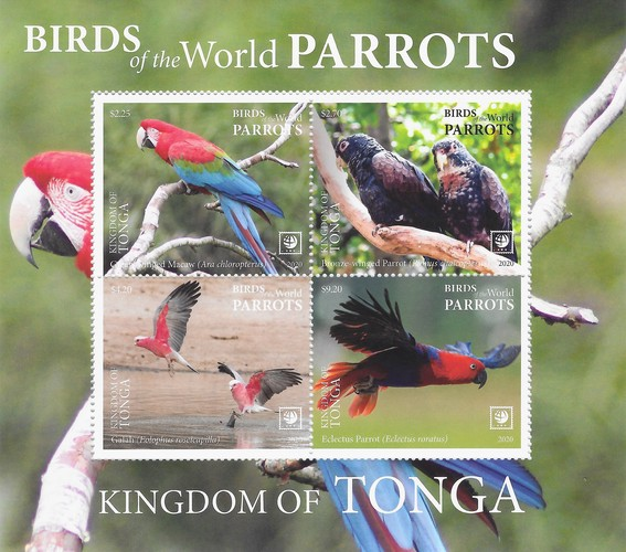 [Birds of the World - Parrots, type ]