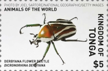 [Animals of the World, type BZK]