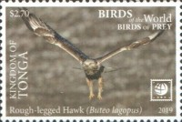 [Birds of the World - Birds of Prey - White Frame, type CAS]