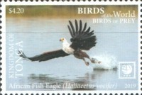 [Birds of the World - Birds of Prey - White Frame, type CAT]