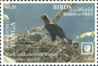 [Birds of the World - Birds of Prey - White Frame, type CAU]