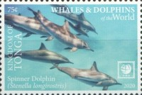 [Marine Life - Whales and Dolphins of the World - White Frame, type CBB]