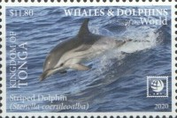 [Marine Life - Whales and Dolphins of the World - White Frame, type CBE]