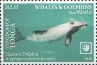 [Marine Life - Whales and Dolpins of the World - White Frame, type CBF]