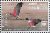 [Birds of the World - Parrots, type CBL]
