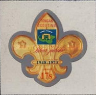[Airmail - The 25th Anniversary of Scouting in Tonga, type OR]