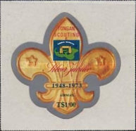 [Airmail - The 25th Anniversary of Scouting in Tonga, type OS]