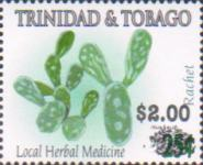 [Stamp of 2005 Surcharged, Typ AAI1]