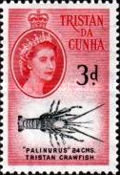 [Queen Elizabeth II and Marine Life, type AG]
