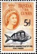 [Queen Elizabeth II and Marine Life, type AI]