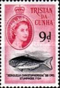 [Queen Elizabeth II and Marine Life, type AK]