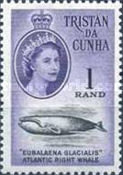 [Queen Elizabeth II and Marine Life, type AO1]