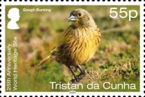 [Birds - The 25th Anniversary of Gough Island as a UNESCO as a World Heritage Site, type AWY]
