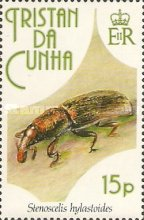 [Insects, Typ SA]