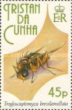 [Insects, Typ SB]