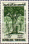 [The 5th World Congress for Forestry, Seattle, type FO]