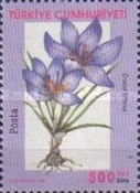 [Flowers - Crocuses, Typ CTI]