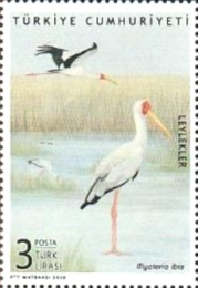 [Birds - Storks, type FNI]