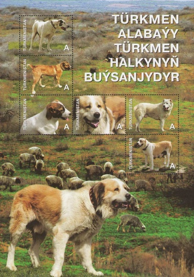 [Dogs, Typ ]